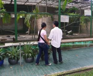HCM, zoo 4