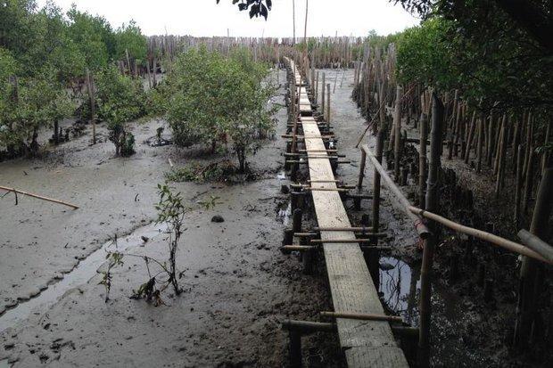 Erosie Samut Sakhon