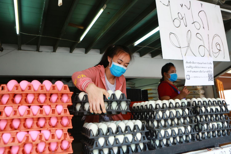 China Het plastiek beweert de Arts van het Stuk speelgoed